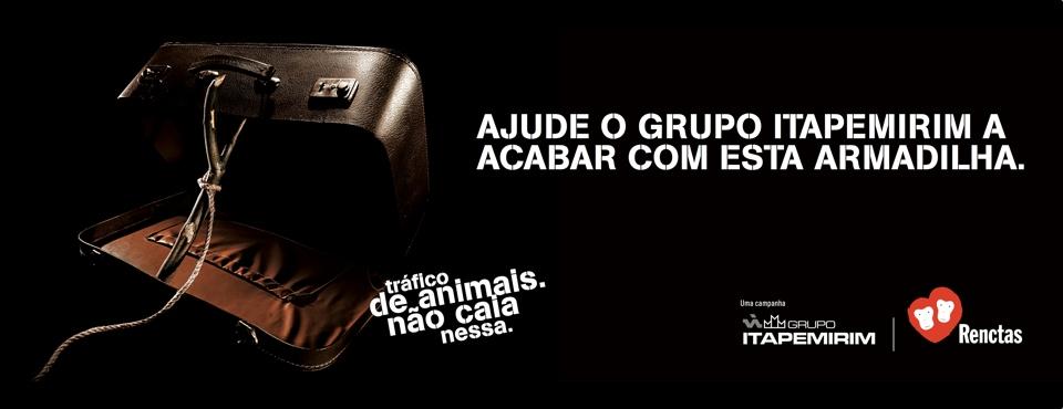 Read more about the article Campanha: Tráfico de Animais Não Caia Nesta Armadilha