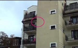 Moradores têm reclamado do barulho feito por pássaro. Foto: Reprodução/YouTube/profesjonalni