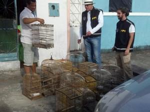 Material apreendido foi levado para o IBAMA. Foto: Divulgação/ Ascom MP