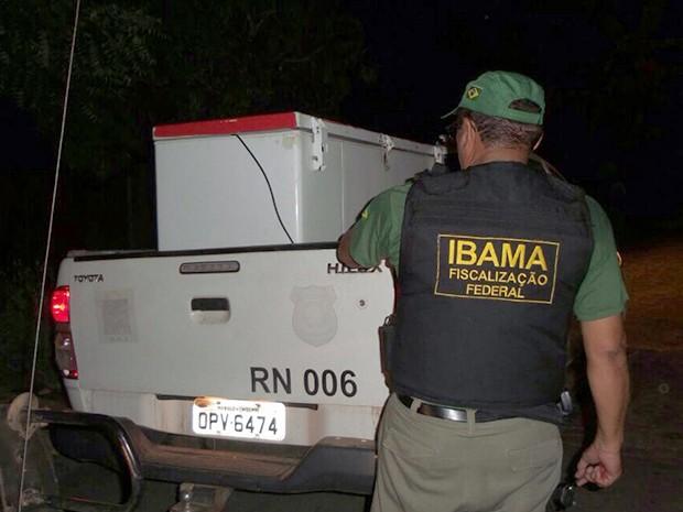 Freezeres utilizados para armazenar animais silvestres foram apreendidos. Foto: Divulgação/ Ibama-RN