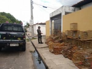 Aves apreendidas pela Polícia Militar em Teresina. Foto: Divulgação/PM