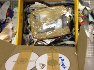 Cobra estava em pacote do Sedex. Foto: Ibama/Divulgação