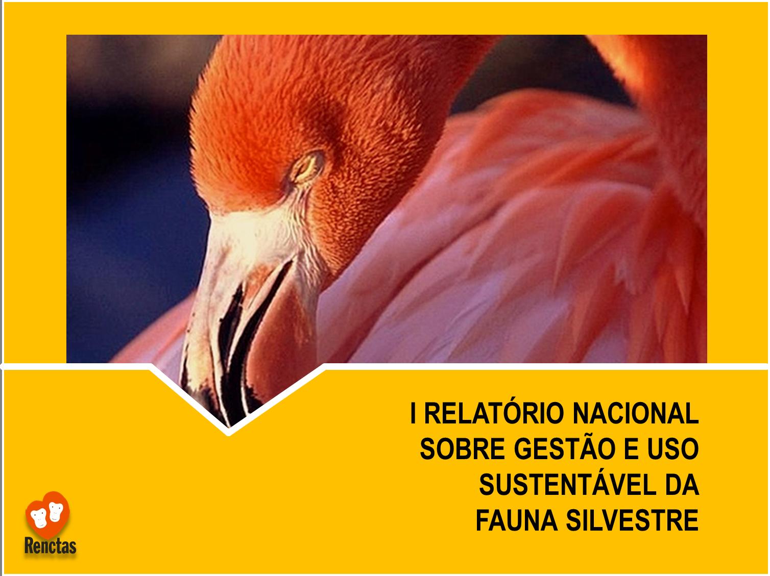 You are currently viewing I Relatório Sobre Gestão e Uso Sustentável da Fauna Silvestre