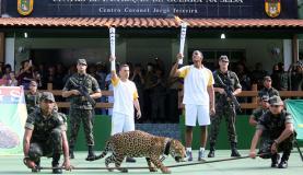 O Comitê Organizador da Rio 2016 admitiu que errou ao permitir a exibição da onça Juma durante o evento da passagem da tocha olímpica em Manaus. (Ivo Lima/Ministério do Esporte)