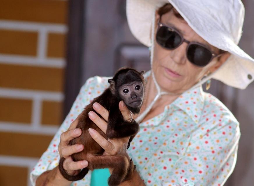 Lenita amamenta um filhote de primata que ela acolheu. Foto: Márcio Silva