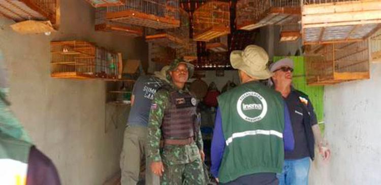 Com objetivo de combater o tráfico de animais, foram abordados 10 estabelecimentos nos distritos de Cercadinho e Populares.